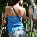Исследования поведения туристов на отдыхе