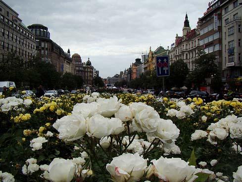 Прага-один-из-красивейших-городов-мира2