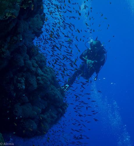 Дайвинг в Кемере – подводная экскурсия