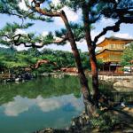 Как правильно вести себя в Японии?
