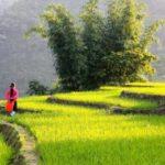 Вьетнам и незабываемый отдых